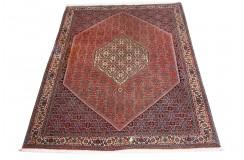 100% wełniany luksusowy dywan Bidjar (Bidżar) Herati z Iranu 100% wełna najwyższej jakosci 200x250cm