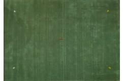 Gładki 100% wełniany dywan Gabbeh Handloom Lori zielony 200x300cm delikatne motywy zwierzęce