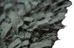 Jasny beżowo-brązowy dywan z wełny filcowanej i poliestru shaggy (INDIE)