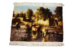 Dywan Tabriz 50Raj wełna najwyższej jakości dywan obrazkowy z Iranu 50x72cm
