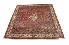Ekskluzywny dywan Bidjar (Bidżar) z Iranu ok 250x250cm 100% wełna ręcznie tkany herati