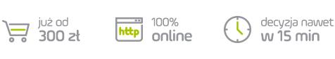 PayU_Raty_2